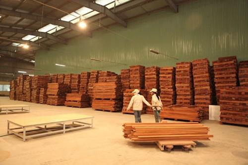 chuyên thu mua pallet gỗ